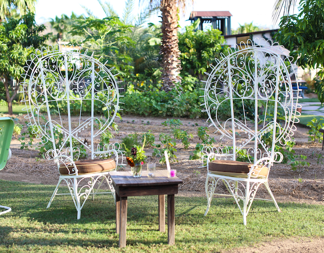 flora farms chairs