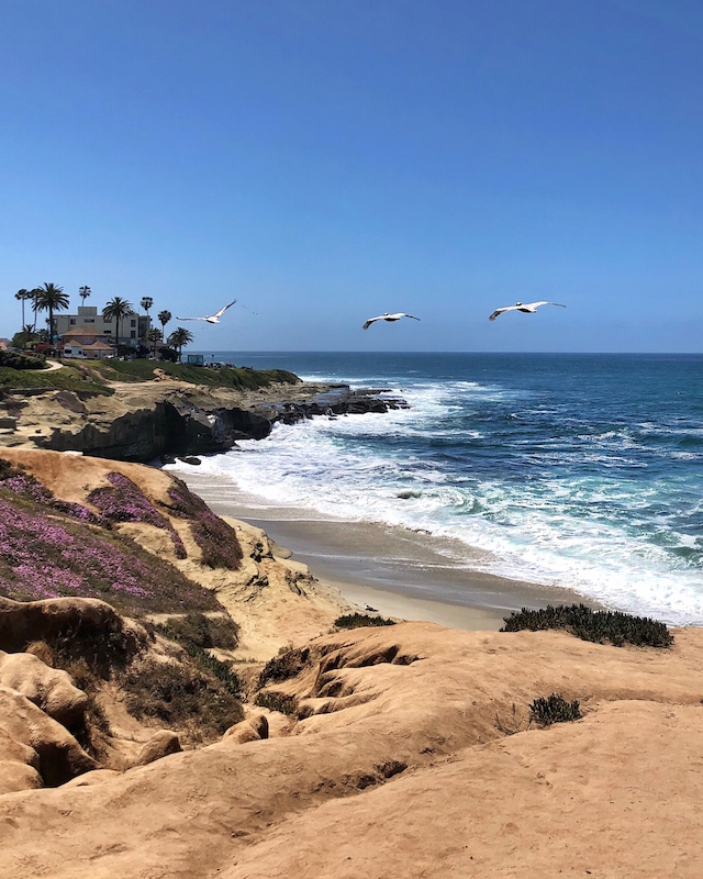 View from cliffs at The Cove in La Jolla, CA