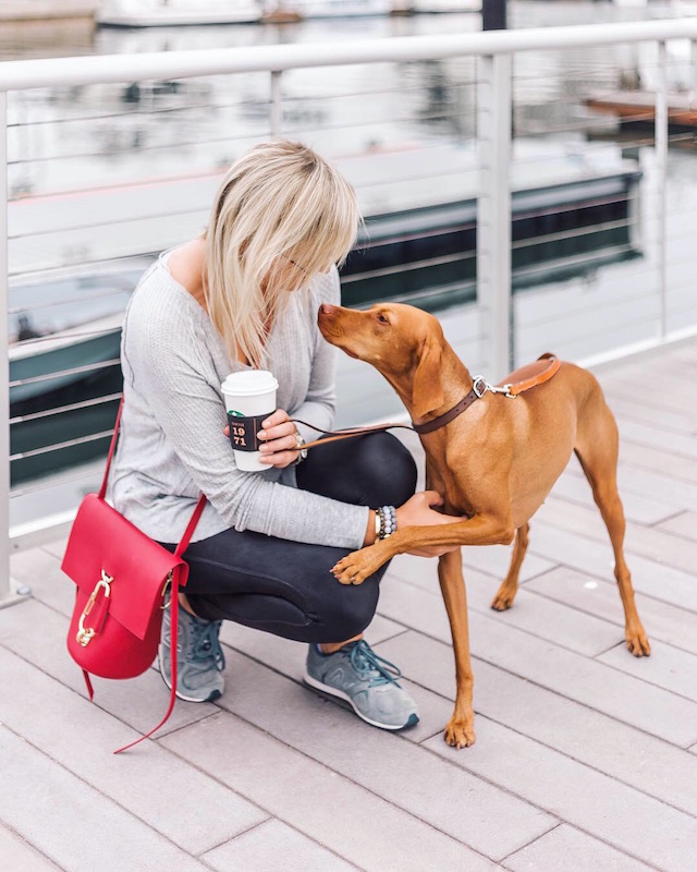 Shopbop Fall Stock Up Sale | My Style Diaries blogger Nikki Prendergast and Louise the Vizsla