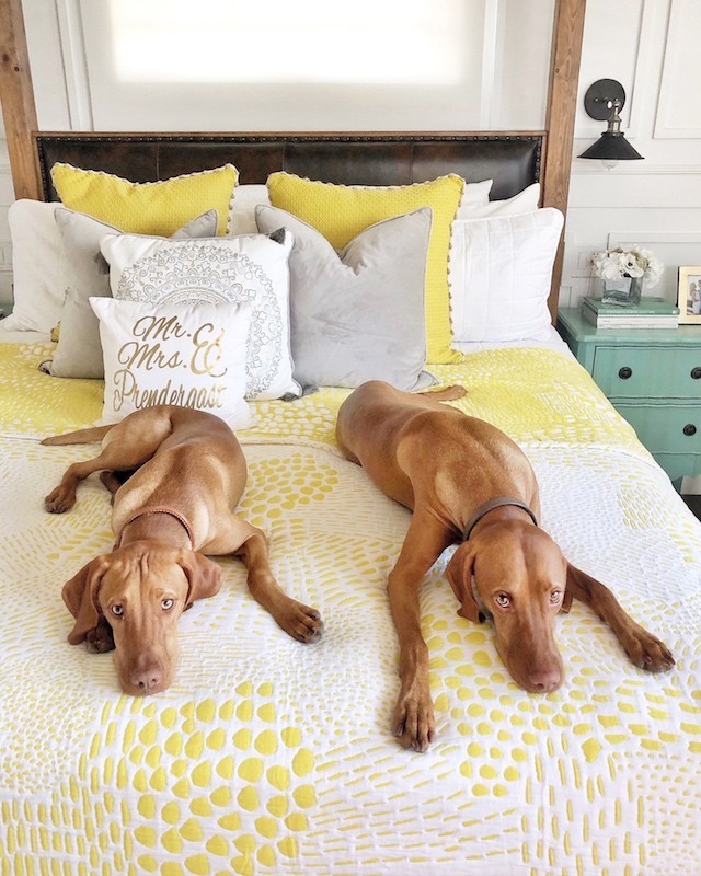 West Elm bedding | My Style Diaries blogger Nikki Prendergast and @WeezeandWilma